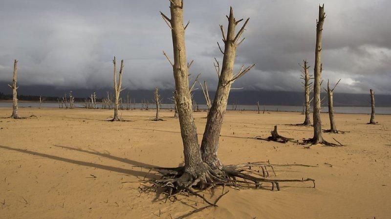 Les épisodes de températures extrêmes, dont certains potentiellement au-delà de limites supportables pour l'être humain, devraient se multiplier dans les prochaines décennies en Afrique (archives).