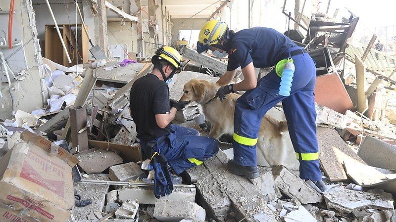 Des secouristes allemands fouillent les décombres à la recherches de corps et de survivants.