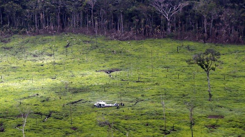 En 2019, 158'894 ha de forêt ont été détruits en Colombie contre 197'159 ha en 2018 et 219'173 ha en 2017.(archives).