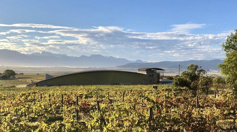 Des filiales de caves valaisannes commercialisent du vin importé