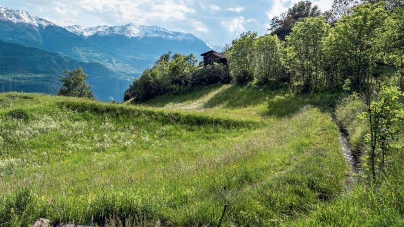 Le paysage suisse de l'année se trouve en Valais