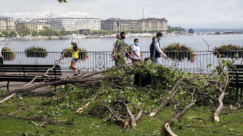Orage sur Genève: les pompiers sont intervenus 260 fois, des parcs temporairement fermés