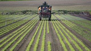 La nouvelle Politique agricole 22+ voulue par le Conseil fédéral hérisse l'UDC