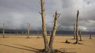 Climat: les canicules africaines très largement ignorées