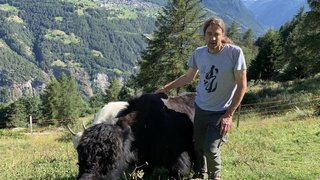 A Embd, Daniel Wismer transmet sa passion des yacks aux touristes du monde entier