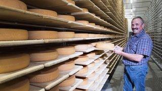 Trois projets pour mieux valoriser les fromages du Grand Entremont