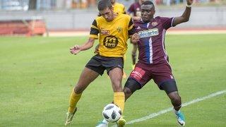 Une colonne vertébrale rajeunie pour le FC Martigny-Sports