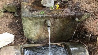 Saint-Martin: les gens viennent de loin pour puiser l'eau «merveilleuse» de la fontaine d'Embrun