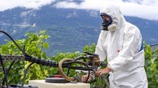 Des pesticides près de chez moi