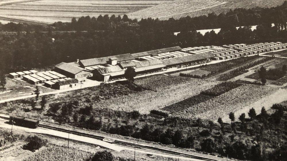 Le  séchoir à tabac industriel de Vouvry dans les années cinquante.