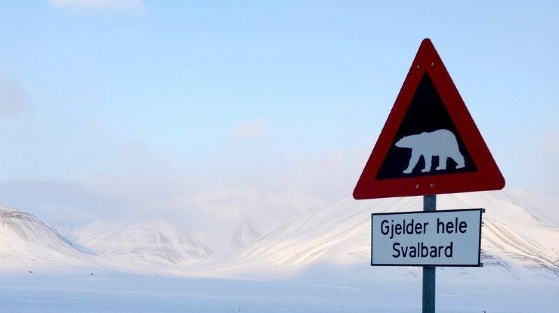 L'incident s'est produit dans la nuit dans un camping près de Longyearbyen, le chef-lieu de ce territoire, à environ 1300 km du pôle Nord. (illustration)
