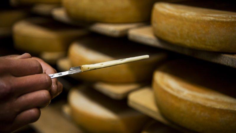 Listerias: une fromagerie de Schwyz visée par une enquête après la mort de 10 personnes