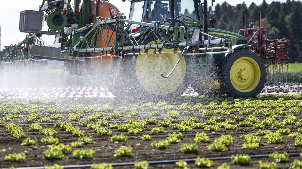 Pesticides: le Conseil des Etats a approuvé un projet pour mieux protéger les nappes phréatiques