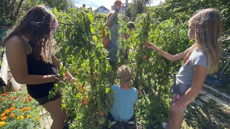 Les enfants apprennent aussi à jardiner.