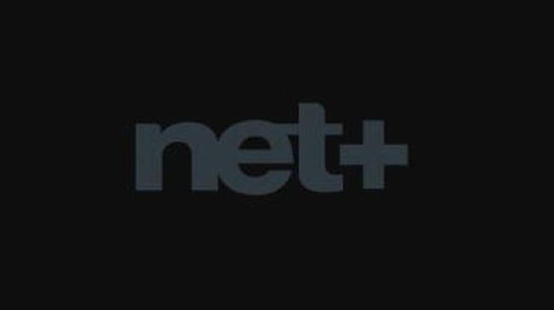 Netplus subit une cyberattaque, ce qui péjore la qualité de ses services.