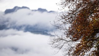 Météo: l'automne s'affirme avec des températures en chute libre
