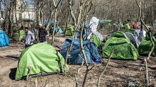 Situation des migrants au centre d'une bataille